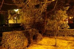 CTilias-ByNight-06