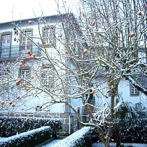Casa das Tilias - Jardim de Inverno com Neve
